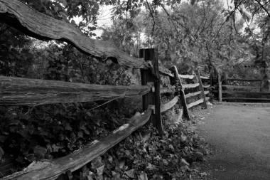 Fence photograph